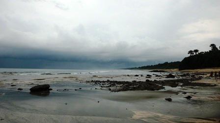 View Pantai Pancur Taman Nasional Alas Purwo