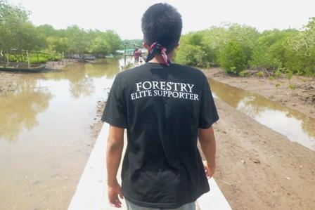 diantara hutan mangrove