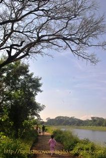 Jogging track Situ Gintung
